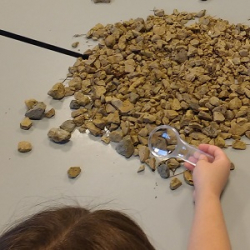NATC 100 Acre Woods Day Camp - Prickly Plants & Rolling Rocks 7.25.19 @ Nature at the Confluence