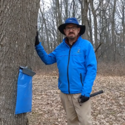 Big Hill Sugar Bush Self-guided Hike 2021 @ Welty Environmental Center